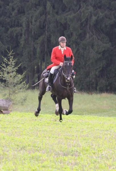nocrop1440n-Jagd 2015 173