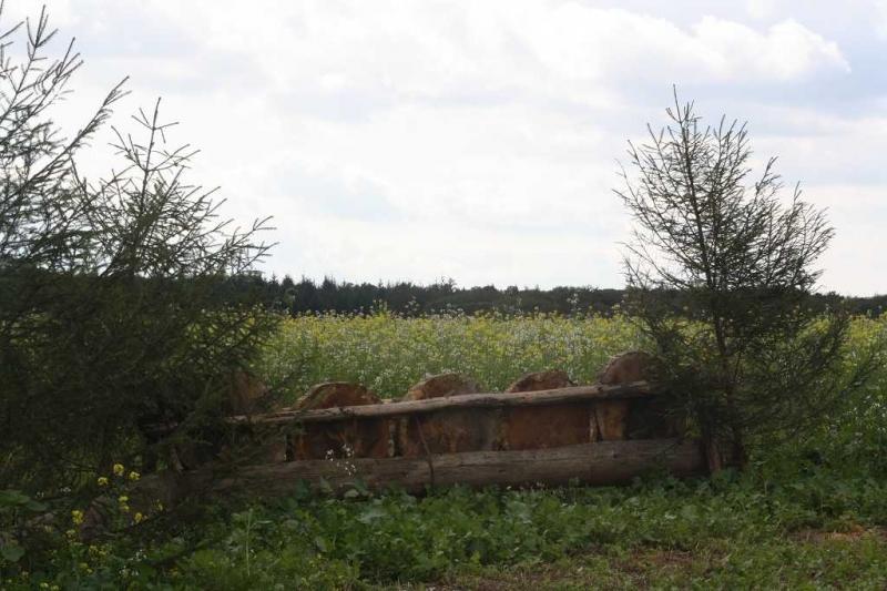 nocrop1440n-Jagd 2015 205