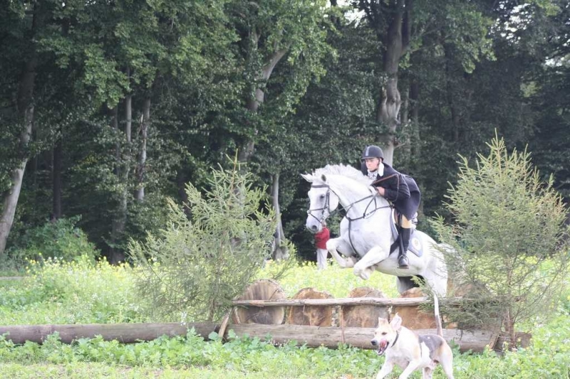 nocrop1440n-Jagd 2015 214