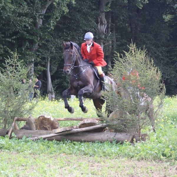 nocrop1440n-Jagd 2015 244