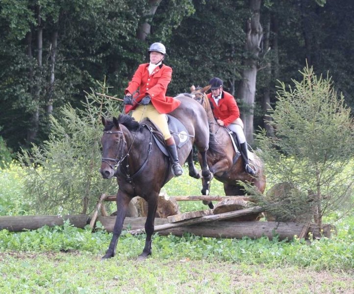 nocrop1440n-Jagd 2015 245