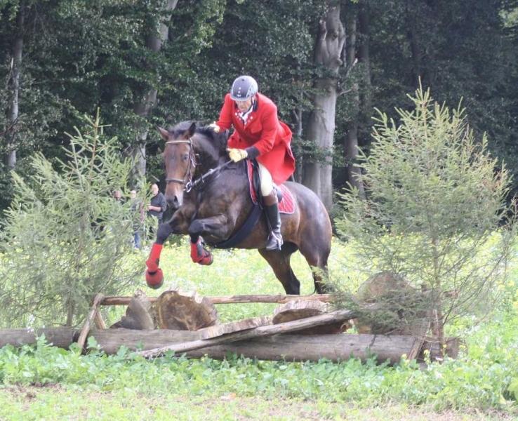 nocrop1440n-Jagd 2015 251