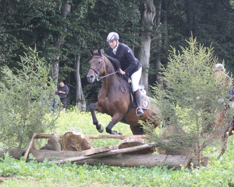 nocrop1440n-Jagd 2015 253