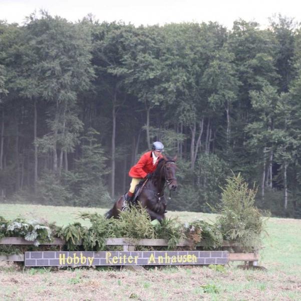nocrop1440n-Jagd 2015 444